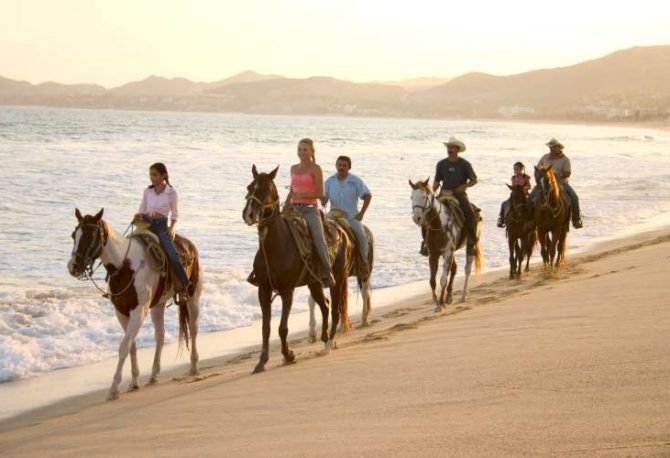 Zihuatanejo Horseback Riding at Playa Larga   Pacific Tours Ixtapa. Join us for this horse riding adventure along the magnificent Playa Larga Beach just 25 Minutes away from Ixtapa Zihuatanejo, enjoy the breeze of the ocean while riding these trained horses along the beach. Tours in Ixtapa Zihuatanejo Mexico