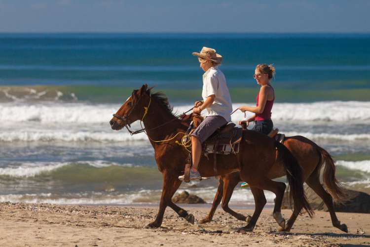 Zihuatanejo Horseback Riding with Lunch, 2 Hours | Pacific Tours Ixtapa. Join us for this horse riding adventure along the magnificent Playa Larga Beach just 25 Minutes away from Ixtapa Zihuatanejo, enjoy the breeze of the ocean while riding these trained horses along the beach. Tours in Ixtapa Zihuatanejo Mexico